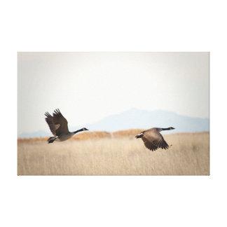 Toile Oies en vol