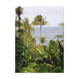Toile Palmier dans les jardins botaniques d'Hawaï