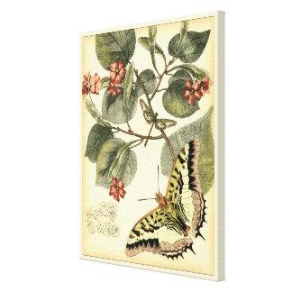 Toile Papillon et libellule avec les fleurs rouges