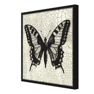 Toile Papillon noir et blanc sur l'arrière - plan criqué
