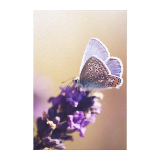 Toile Papillon sur un brin de lavande