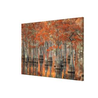 Toile Parc d'état des arbres de Cypress | George Smith,