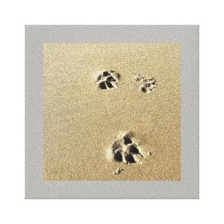 Toile Pattes dans le sable
