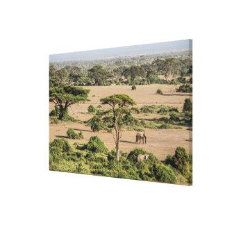 Toile Paysage africain avec l'éléphant