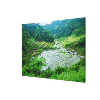 Toile Paysage de terrasse de riz, Philippines