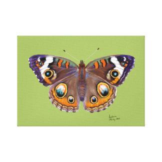 Toile Peinture réaliste de papillon commun de maronnier