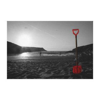 Toile Pelle sur une plage au coucher du soleil