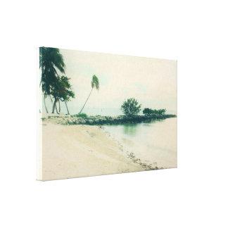Toile Péninsule de palmier à la plage de Smathers, Key