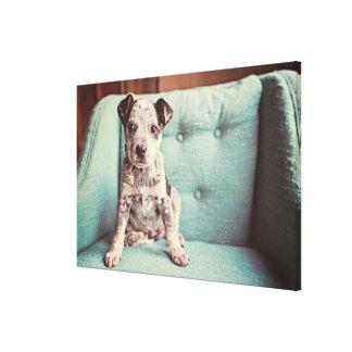 Toile Petit chiot mignon sur la chaise turquoise
