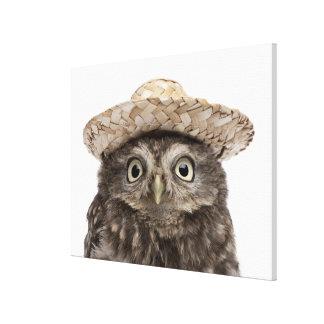 Toile Petit hibou utilisant un chapeau de paille -