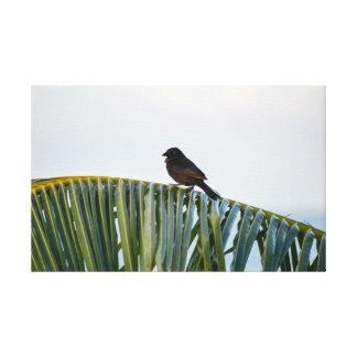 Toile Petit oiseau noir