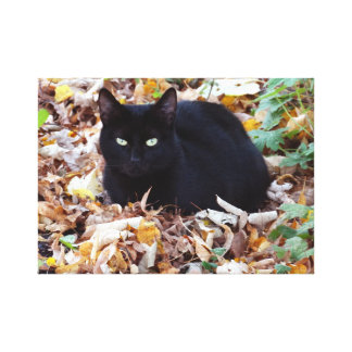 Toile Photo d'automne de chat noir simple