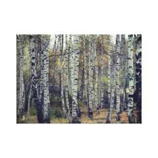 Toile Photo d'automne de Forrest de bouleau simple