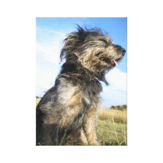 Toile Photo de chien simple