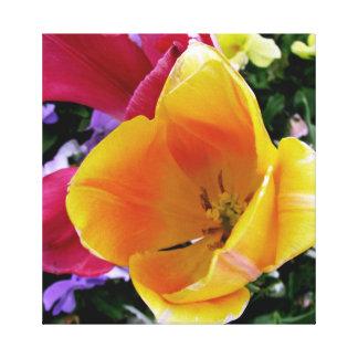 Toile Photo jaune saisissante de tulipe