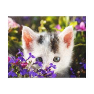 Toile Photo mignonne de chat de jardin de fleurs de