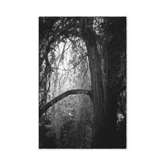 Toile Photo noire et blanche de paysage de saule déprimé