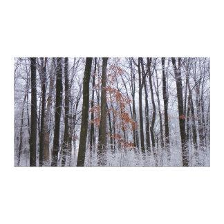 Toile Photographie de paysage d'hiver de forêt