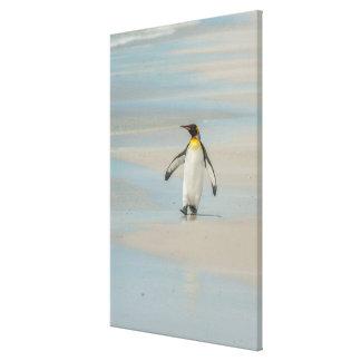 Toile Pingouin marchant sur la plage