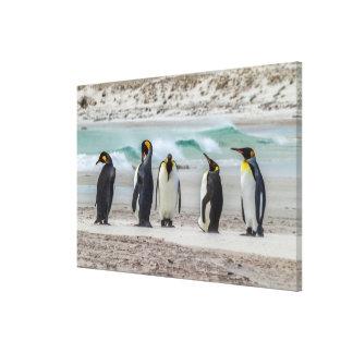 Toile Pingouins lissant sur la plage