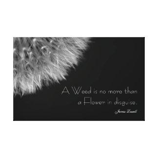 Toile Pissenlit dans noir et le blanc avec la citation
