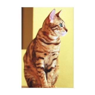 Toile Portrait de chat du Bengale