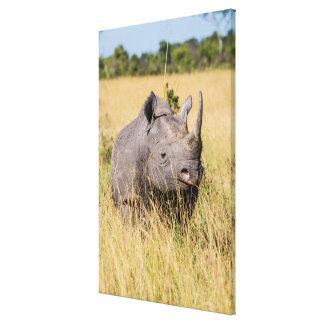 Toile Portrait de rhinocéros noir