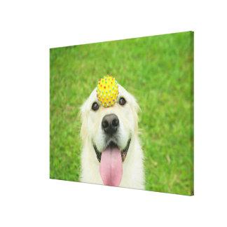 Toile Portrait d'un chien avec une boule sur son nez