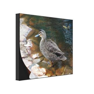 Toile Pritn - canard en bois Toiles