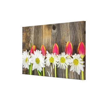 Toile rangée des tulipes et des marguerites sur le bois