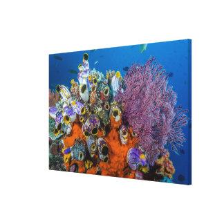 Toile Récif coralien et poissons