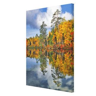 Toile Réflexions d'étang d'automne, Maine