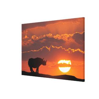 Toile Rhinocéros au coucher du soleil, masai Mara, Kenya