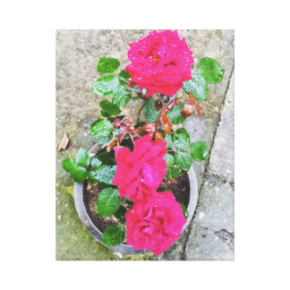 Toile Roses