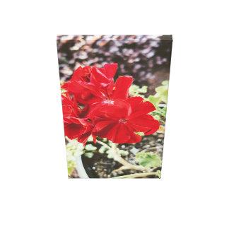 Toile rouge de fleur