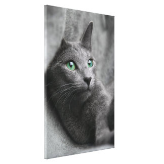 Toile Russe-bleu-chat-avec les yeux verts