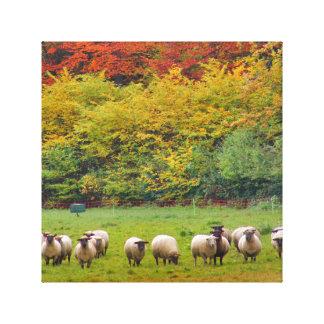 Toile - Sheep Family
