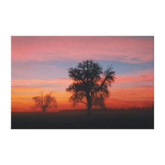 Toile Silhouette d'arbre de coucher du soleil d'hiver de