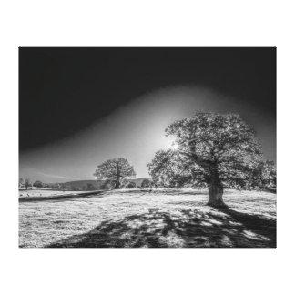 Toile Sun serein dans le pré noir et blanc