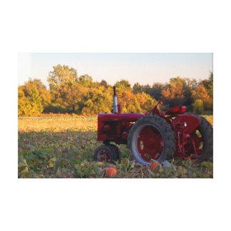 Toile Tracteur rouge dans un domaine des citrouilles