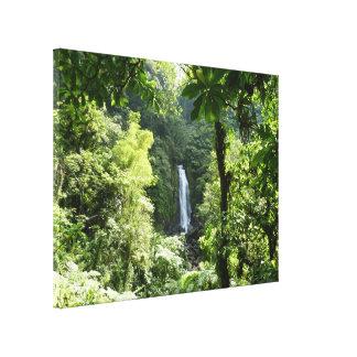 Toile Trafalgar tombe photographie tropicale de forêt