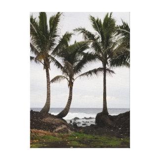 Toile Trio hawaïen de palmier