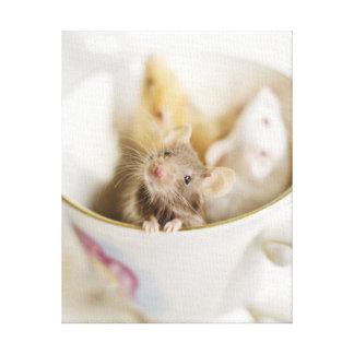 Toile Trois petites souris