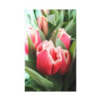 Toile Tulipe de dentelle rose