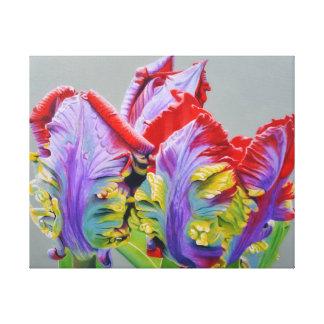 Toile Tulipe de perroquet de Rocco, pédales bouclées peu