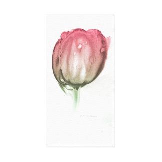 Toile Tulipe rouge