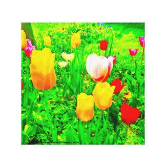 Toile Tulipes de jardin d'agrément