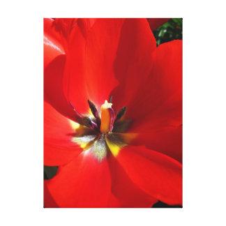 Toile Tulipes rouges