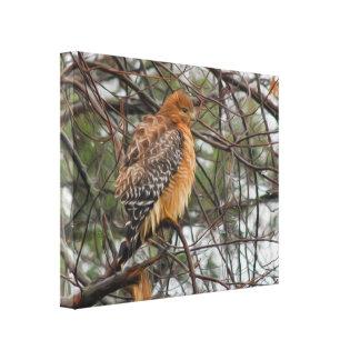 Toile Un oiseau Rouge-épaulé de faucon sur une branche