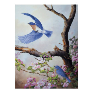 """Toile UV Printes de """"oiseaux bleus"""" Posters"""